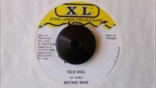 Download BEENIE MAN - OLD DOG MP3 song and Music Video