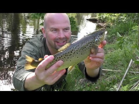 #11 (April) Dry Fly Trout Fishing - River Derwent