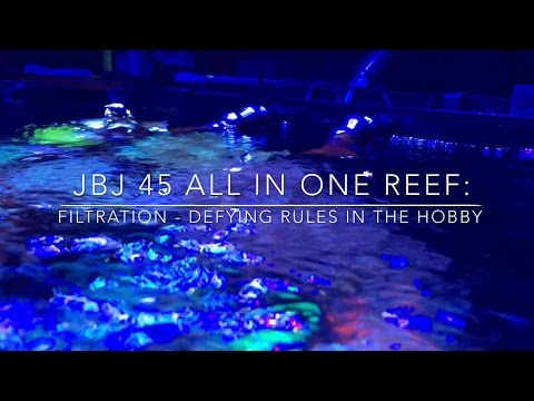 Filtration - Defying Rules In The Hobby - Reef Update