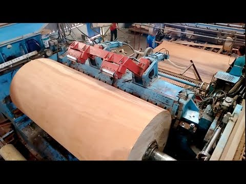 Amazing Biggest plywood