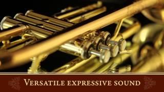 Jose Hernandez Bach Strad Mariachi Trumpet