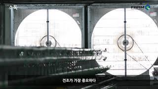 소독(국문)