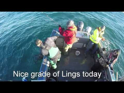 Lingcod Fishing Off Winchester Bay On Southern Charm