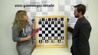 Обзор № 1. Демонстрационная шахматная доска 80х80. Магазин УмныеИгры.Москва