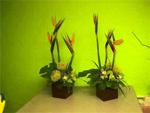 green-cymbidium-orchid-centerpieces-image-collection-flower-ideas
