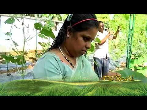 Multiple disabled people find new life through organic farming| Nattupacha 04-11-17