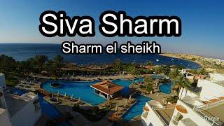 Подробный обзор отеля Siva Sharm 5* Sharm el sheikh апрель 2019