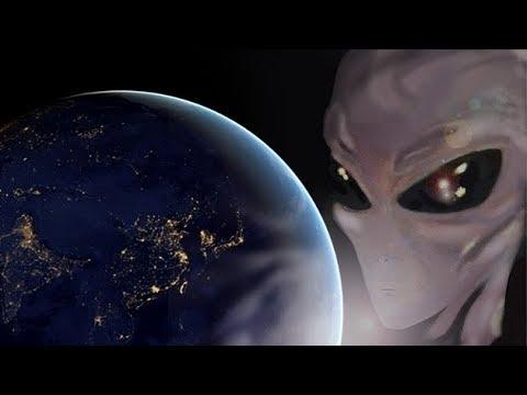 Привет с планеты Нибиру! (С бору по сосенке №44)