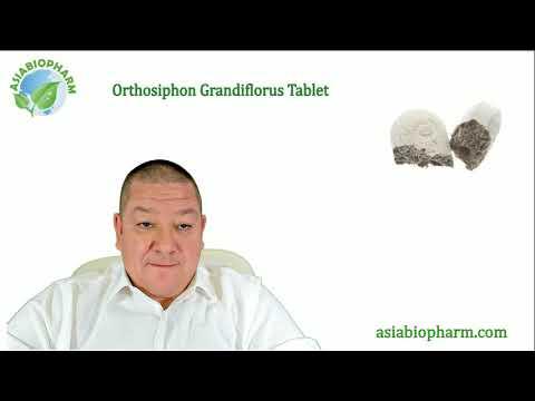 Ортосифон Тычиночный Таблетки