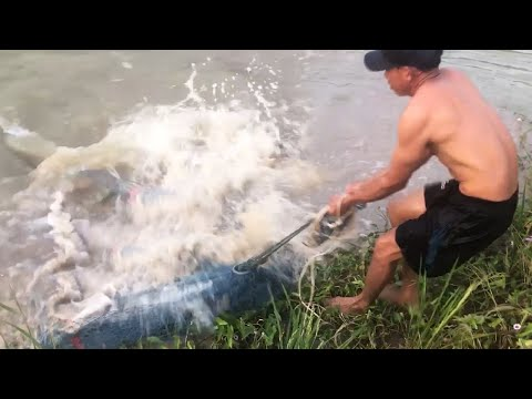 BIGGEST Monster Fish Caught From Land!