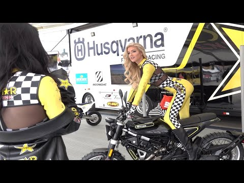 Jess Harbour and the Rockstar Energy Girls