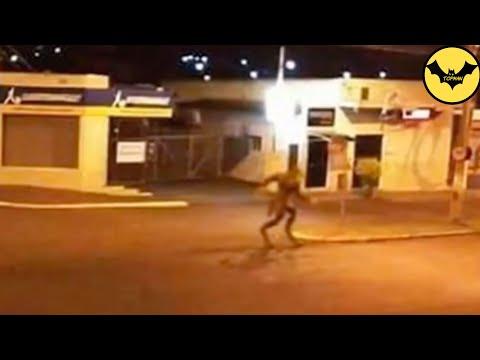 5 Loups-Garous Capturées en video dans la Réalité.