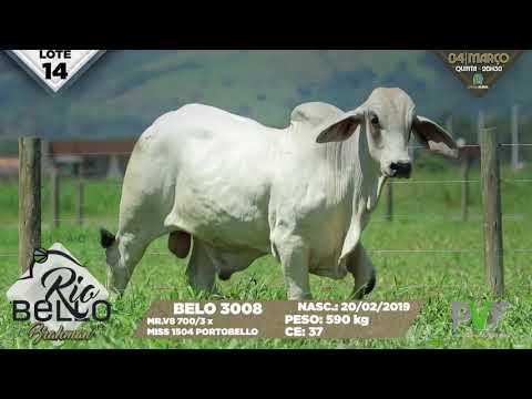 LOTE 14   BELO 3008