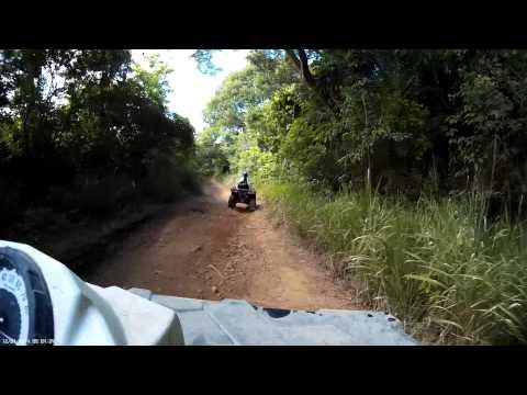 Gecko Island Adventures St. Croix
