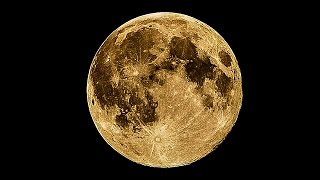 How Important Is The Moon?