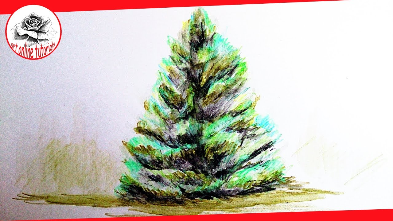 How To Draw A Realistic Christmas Tree.How To Draw A Realistic Tree With Watercolor Pencils Asmr Narrated