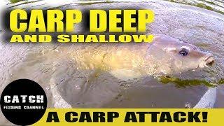 CATCHING CARP DEEP & SHALLOW IN ONE SWIM / PELLET FISHING