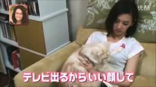 芸能人の私生活見せちゃいます 北川景子 北川景子 検索動画 8