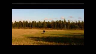 Jussi Huhtala - Fatal memories (Urban Savages soundtrack)