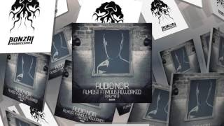 Audio Noir - Wunderschong - Rise And Fall Remix (Bonzai Progressive)