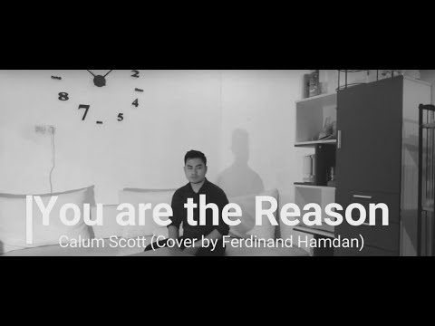 you-are-the-reason---calum-scott-(music-by-sing2-piano)