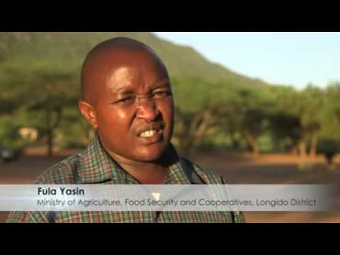 Climate action in Tanzania 3A services for food security