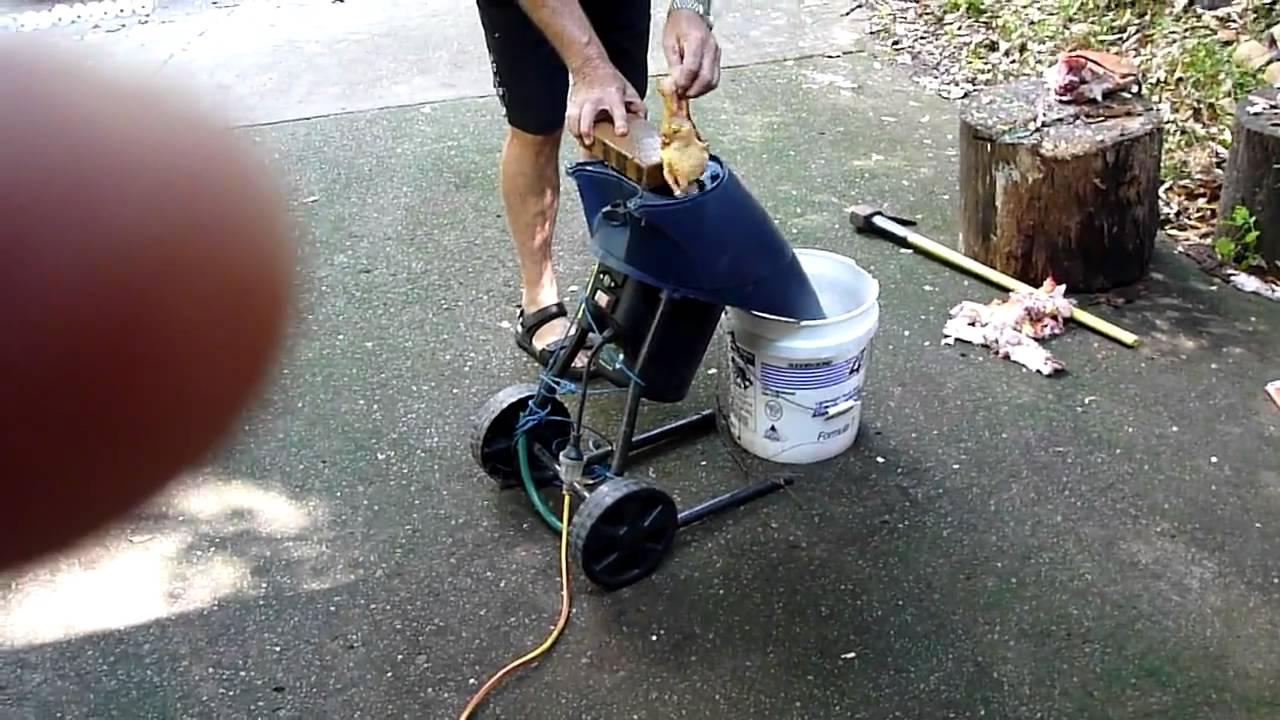 making berley with a garden shredder mulcher YouTube