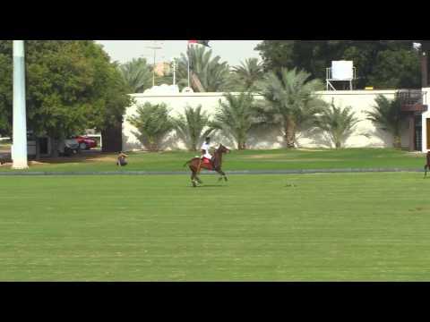 Bin Drai VS Zedan in the Emirates Open Polo Championship