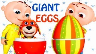 Five Little Babies Opening Giant Eggs | Zool Babies Fun Songs | Five Little Babies Collection