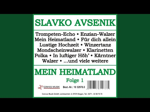 Klarinette-Polka
