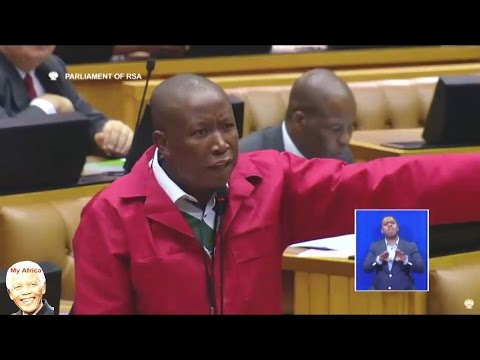 "Julius Malema ""We Cant Allow Criminals To Speak In Parliament"""