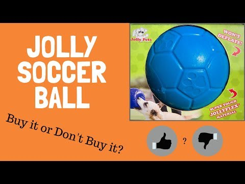 should-i-buy-a-jolly-pets-soccer-ball?