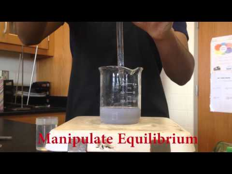 LeChateliers Magnesium Hydroxide Reaction