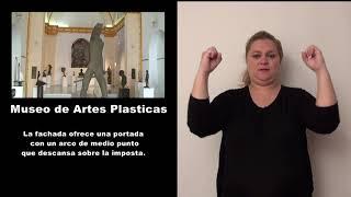 Museo de Artes Plasticas