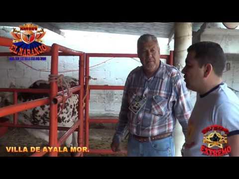 ENTREVISTA RANCHO EL NARANJO ANTONIO DOMINGUÉZ ARAGON