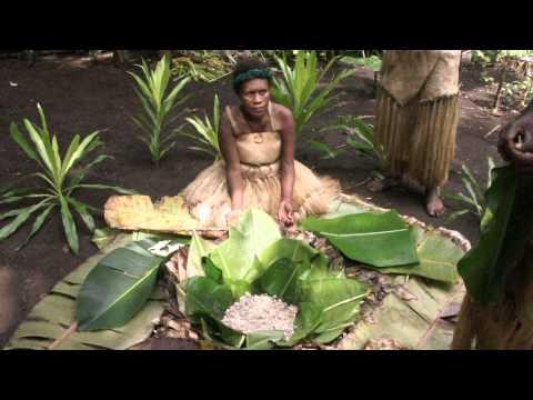 Vanuatu Esum multi cultural village 瓦努阿圖原住民文化村 - Food preservation