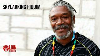 "Reggae Instrumental - ""Skylarking"""