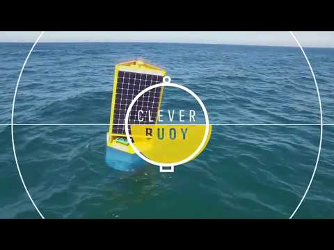 Introducing Shark Mitigation Systems' Clever Buoy