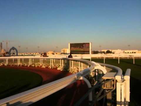 Paardenraces Doha, Qatar