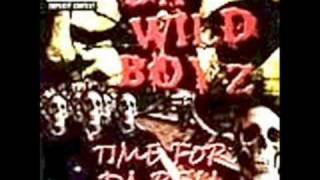 Watch Da Wild Boyz Ya Bitch You video