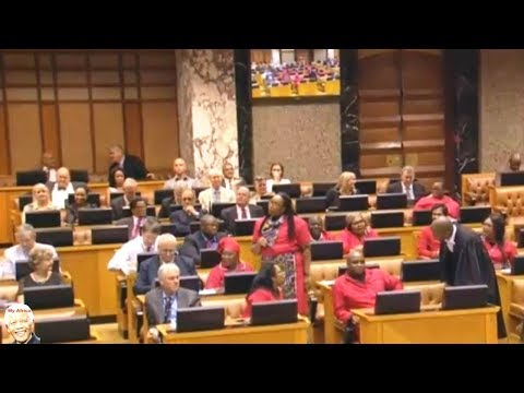 Chaos In Parliament As Malusi Gigaba AWOL