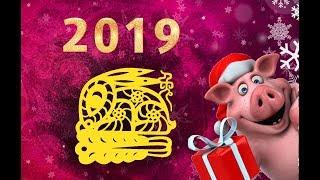 Прогноз для знака КОТ/КРОЛИК на 2019 год