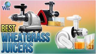 10 Best Wheatgrass Juicers 2018