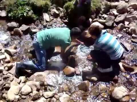 Sivas Suşehri Çataloluk köyü sis Anuklu Elle Alabalık tutuyoruz