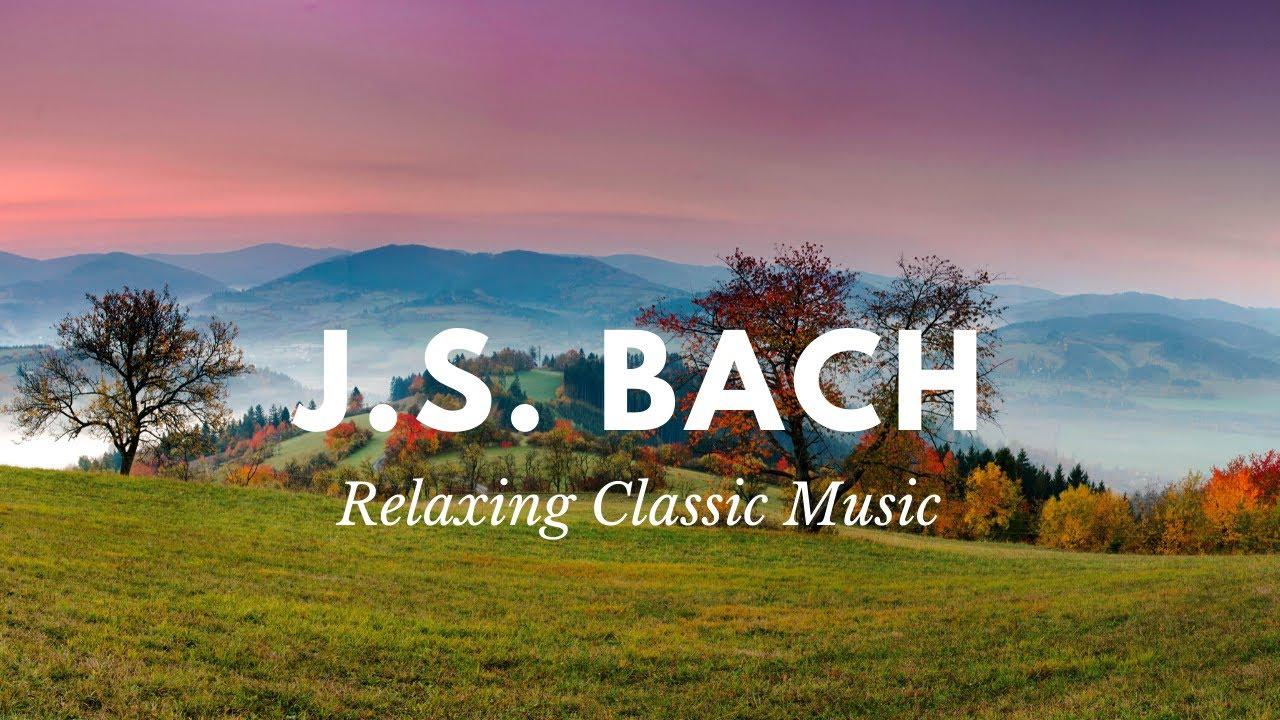 Bach Música Clásica Relajante Instrumental Para Estudiar Concentrarse Trabajar Relajarse Leer Youtube