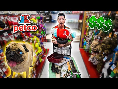 Buying My Blind Dog EVERYTHING He Touches!