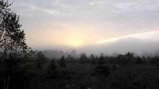 Восход осень. Поселение родовых поместий Ориана