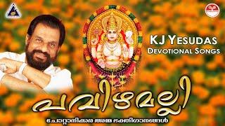പവിഴമല്ലി   pavizhamalli   Chottanikara Amma Devotional Songs   Pavizhamalli