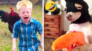 Best Funny Cats, Dogs And Other Pets Videos 🐶😹 - Funny Animals Compilation 😂