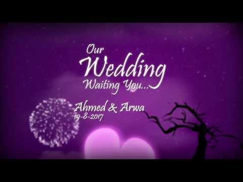 Mohamed Ismail | Love & Wedding 2017